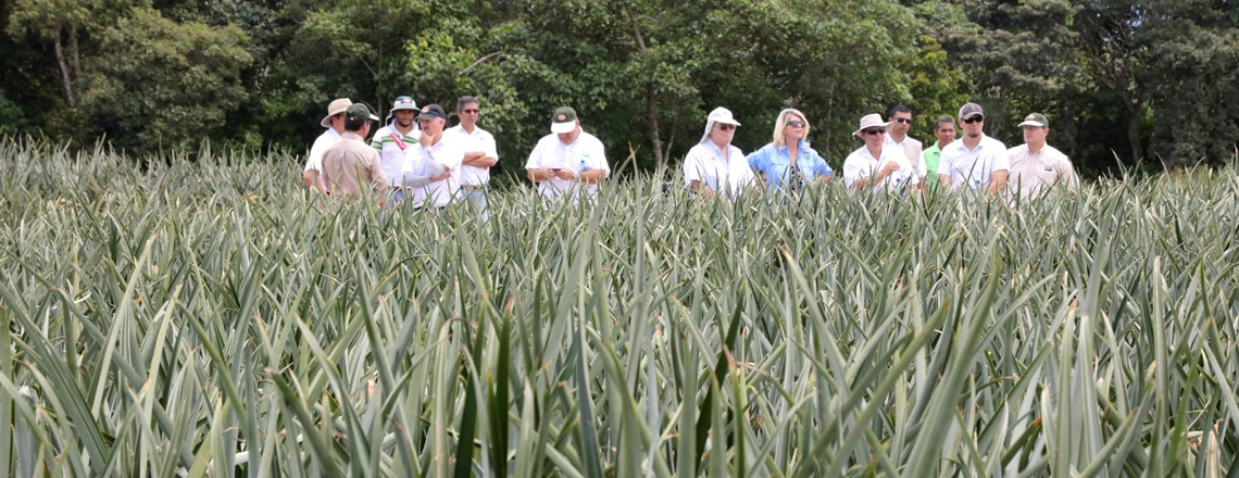 APHIS, at the Service of Costa Rican Agricultural Exporters