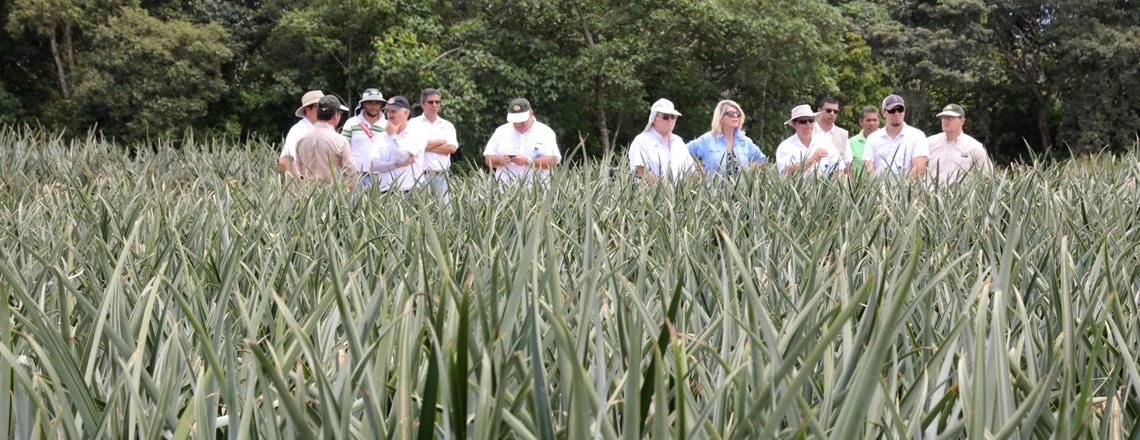 APHIS, al servicio de los exportadores agrícolas costarricenses
